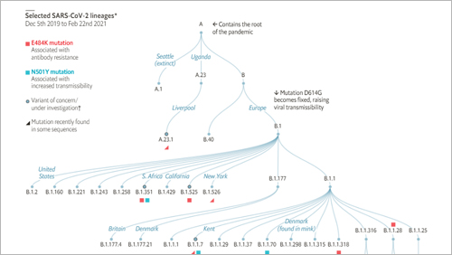 The same covid-19 mutations are appearing in different places