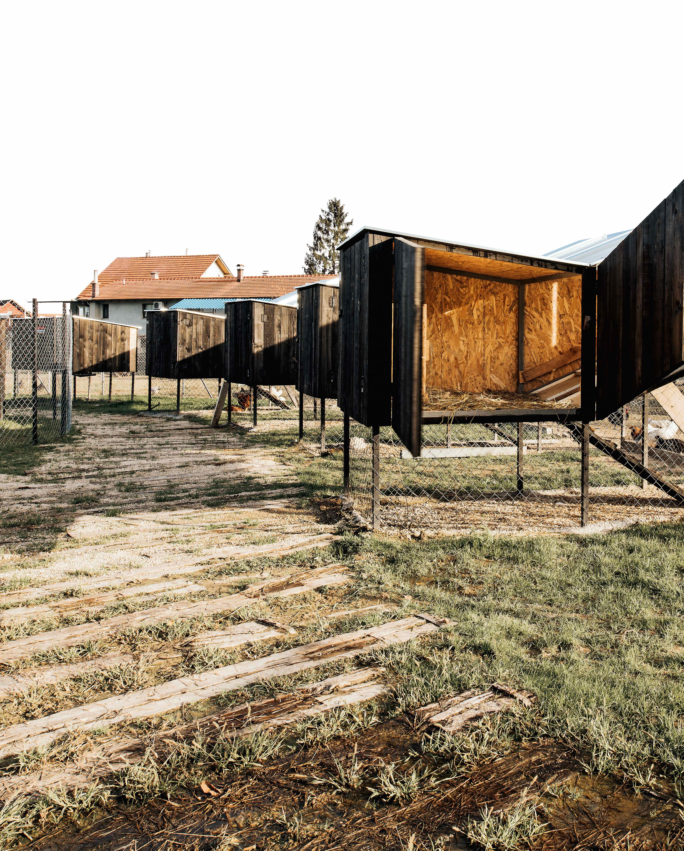 Chickenville, Rakov Potok