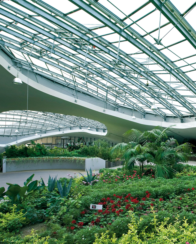 Grin Grin, Botanical Garden in Island City