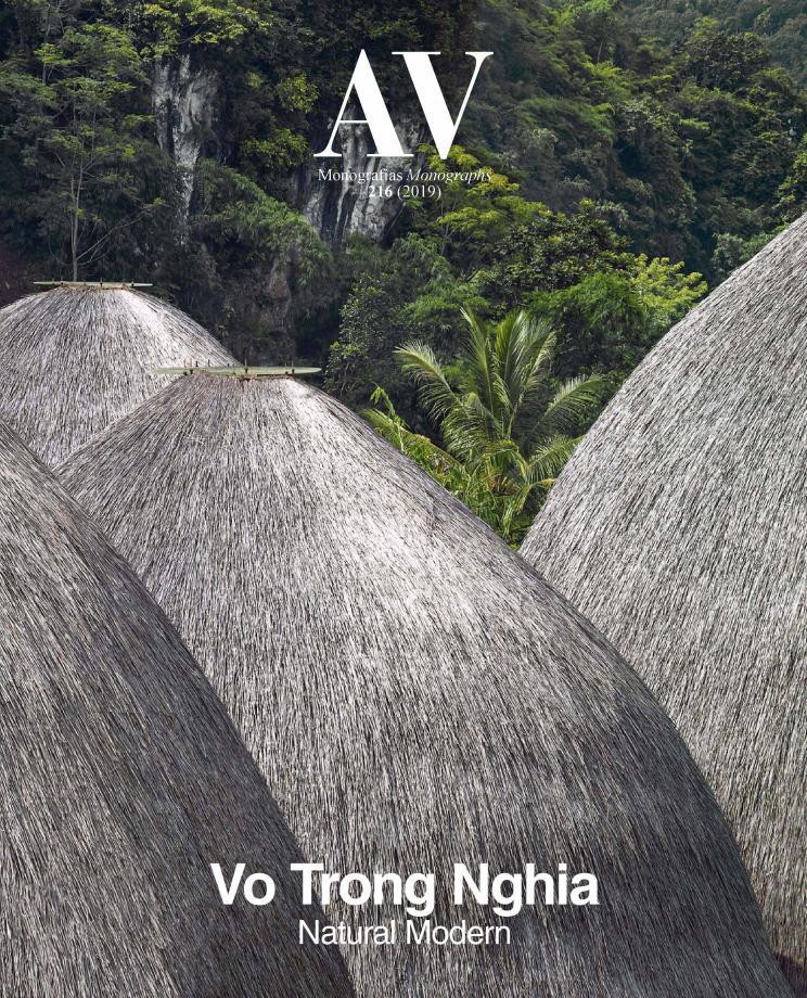 Vo Trong Nghia